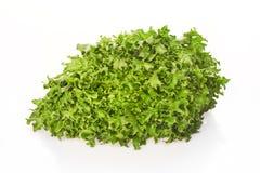 Grüner Salat mit den Wassertropfen lokalisiert auf Weiß Lizenzfreies Stockbild