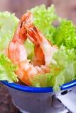 Grüner Salat mit Garnelen Lizenzfreies Stockbild