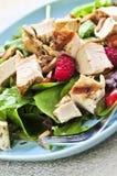 Grüner Salat mit gegrilltem Huhn Stockbilder