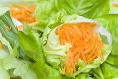 Grüner Salat mit Karotten Lizenzfreie Stockfotografie