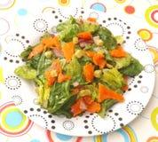Grüner Salat mit Lachsfischen Lizenzfreie Stockfotos