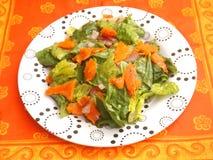 Grüner Salat mit Lachsfischen Lizenzfreie Stockbilder