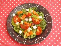 Grüner Salat mit Lachsfischen Stockbilder