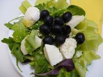 Grüner Salat mit Mozzarellakäse und -oliven Stockfotos