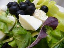 Grüner Salat mit Mozzarellakäse und -oliven Stockfotografie