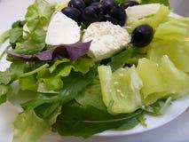 Grüner Salat mit Mozzarellakäse und -oliven Lizenzfreies Stockfoto