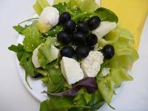 Grüner Salat mit Mozzarellakäse und -oliven Stockbild