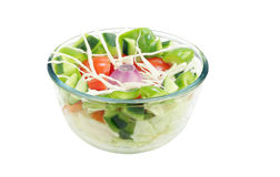 Grüner Salat mit Tomate, Gurke Lizenzfreie Stockbilder