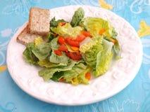 Grüner Salat mit Tomaten stockbilder