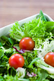 Grüner Salat mit Tomaten Stockfoto