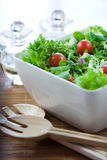Grüner Salat mit Tomaten Stockfotos