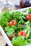 Grüner Salat mit Tomaten Stockfotografie