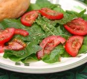 Grüner Salat mit Tomaten lizenzfreies stockbild