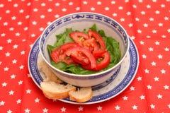 Grüner Salat mit Tomaten lizenzfreie stockfotografie