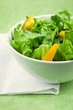 Grüner Salat und Pfeffer Stockbild