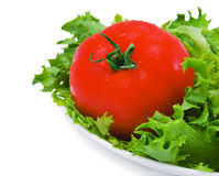 Grüner Salat und Tomate Stockbild