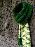 Grüner Schal Stockfotos