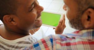 Grüner Schirm-Tablet-Monitor mit homosexuellen Paaren unter Verwendung des Internets Stockbilder