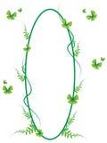 Grüner Schmetterlingsrahmenvektor und Illustration 01 Lizenzfreie Stockfotos