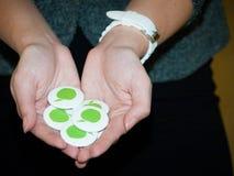 2012 grüner Schulgipfel Stockfotografie