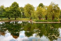 Grüner See Stockbild