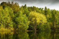 Grüner See an der Dämmerung Stockfotografie