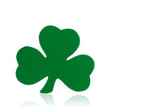 Grüner Shamrock auf weißem Hintergrund Lizenzfreie Stockbilder