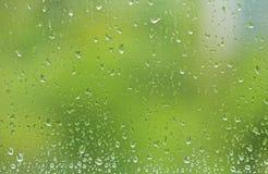 Grüner Sommerhintergrund von einem nassen Fenster mit Tropfen des Regens Dr. lizenzfreie stockfotografie