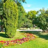 Grüner sonniger Garten im Stadtpark Lizenzfreies Stockbild