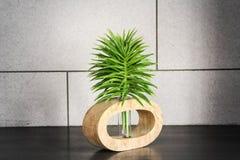 Grüner Spitzenbaum mit Rohr Stockbild