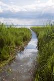 Grüner Stock und blauer See Stockfotos