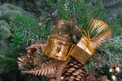 Grüner Tannenzweig mit goldenen Weihnachtsdekorationen Stockfotografie