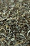 Grüner Tee auf der Oberfläche in der Perspektive Lizenzfreie Stockfotos