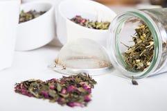 Grüner Tee im Glas und in der unterschiedlichen Art von Kräutern Lizenzfreie Stockfotos