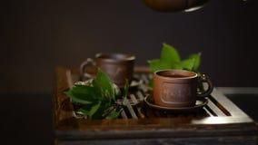 Grüner Tee mit Cup und Teekanne stock video footage