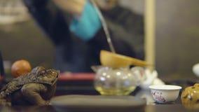 Grüner Tee mit Cup und Teekanne Nahaufnahme eines weißen Bechers auf einem Vorlagen-` s Hintergrund stock video