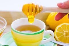 Grüner Tee mit Ginseng- und Salbeisatz Lizenzfreie Stockfotos
