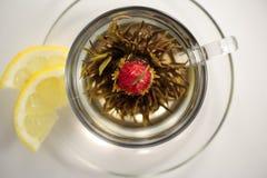 Grüner Tee mit Zitronenkeilen Lizenzfreies Stockbild