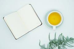 Grüner Tee, sauberes Notizbuch lizenzfreies stockbild