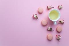 Grüner Tee und französische macarons Pastellkuchen auf rosa Hintergrund Nachtisch in einem Garten Flache Lage Raum des freien Tex Lizenzfreies Stockbild