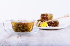 Grüner Tee und Honig auf einem weißen Hintergrund Lizenzfreies Stockbild