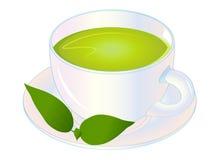 Grüner Tee-Vektor-Illustration lizenzfreies stockbild