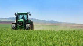 Grüner Traktor auf dem Gebiet. Stockfoto
