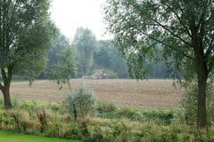 Grüner Traktor auf einem Gebiet Lizenzfreies Stockbild