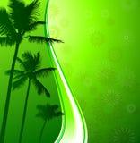 Grüner tropischer Hintergrund Stockfoto