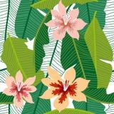 Grüner tropischer Hintergrund mit Bananenblättern und -blumen Lizenzfreie Stockfotos