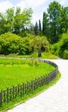 Grüner tropischer Park Stockfotografie