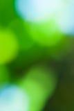 grüner und blauer abstrakter defocused Hintergrund mit Sonnenschein lizenzfreie stockfotografie