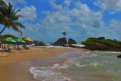 Grüner und gelber Regenschirm in einem sandigen Strand in Paraiba Brasilien Lizenzfreies Stockbild