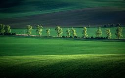 Grüner und grauer Frühlingsfeld-Zusammenfassungshintergrund stockbilder